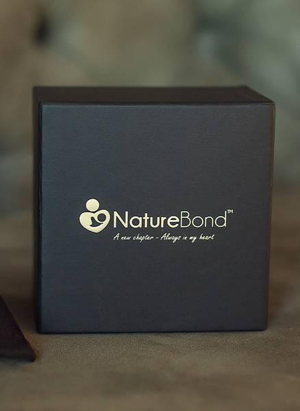 Bilde av Nature Bond bambus ammeinnlegg, 5-pk