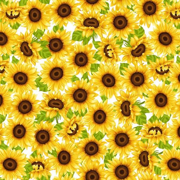 Bomull stoff Sunflowers hvit og gul