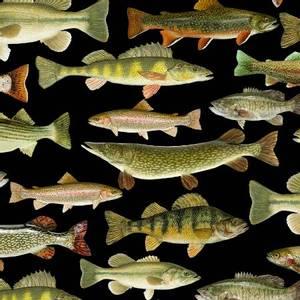 Bilde av Bomullstoff svart Fisk