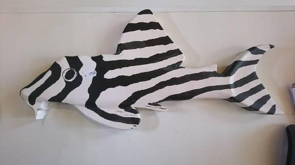 Bilde av Hypancistrus Zebra Håndlaget