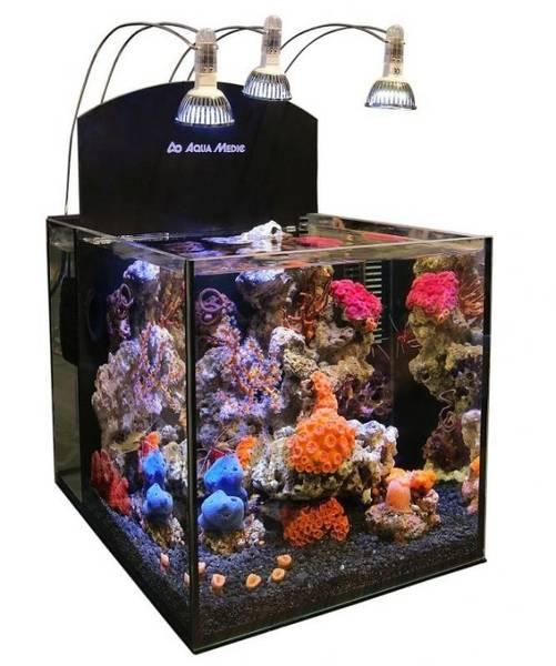 Bilde av Aqua Medic Yasha Advance 33 liter