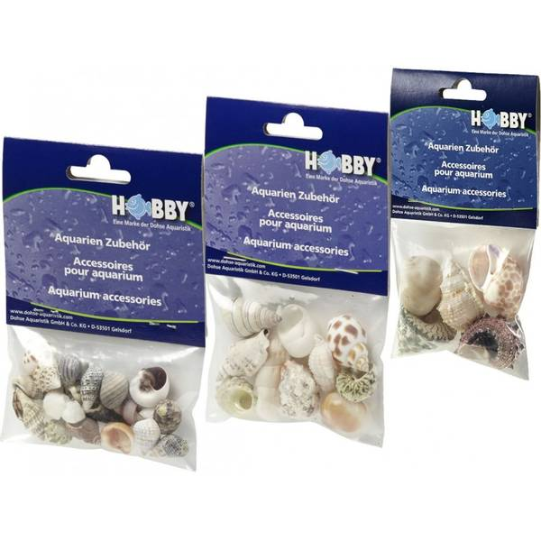 Bilde av Hobby  Seashell Set Medium