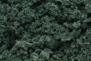 Bilde av Foliage Clusters, mørk