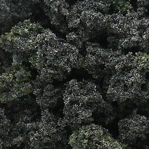 Bilde av Bushes, skog miks