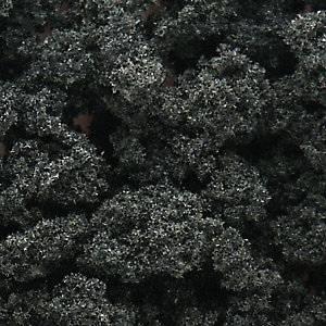 Bilde av Bushes, skog grønn