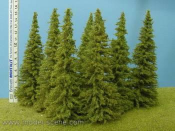 Grantrær