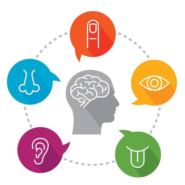 Workshop i sanseintegrasjon