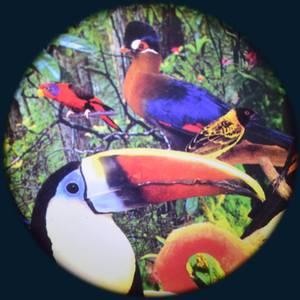 Bilde av Solar effekthjul tr. fugl