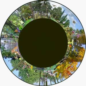 Bilde av Solar max effekthjul woodland