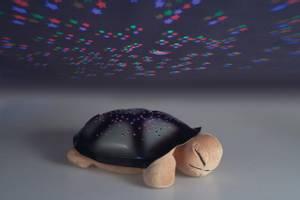 Bilde av Skilpadde med lys