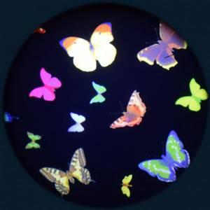 Bilde av Solar effekthjul sommerfugler