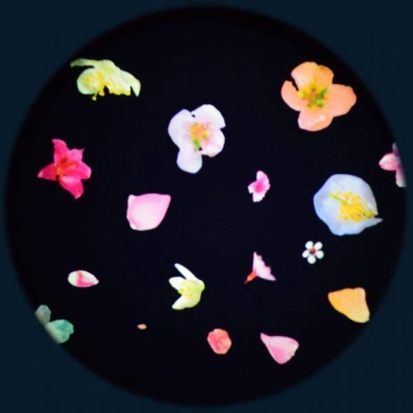 Solar effekthjul blomster