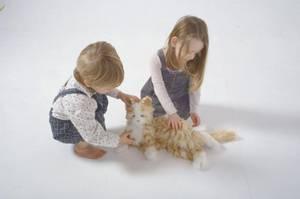 Bilde av Interaktiv katt - Else