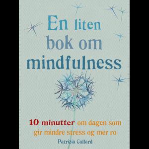 Bilde av miniboken om mindfullness