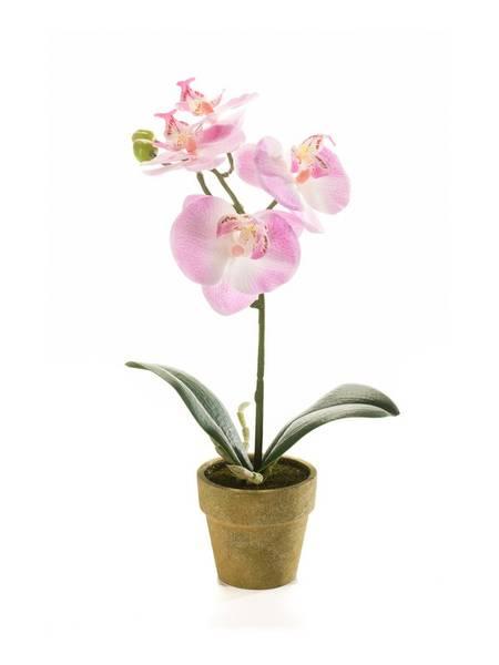 Kunstig Orkide Mini Rosa 25cm