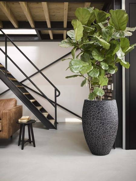 Capi Tutch Vase Elegant Deluxe Leire Antrasitt 72cm