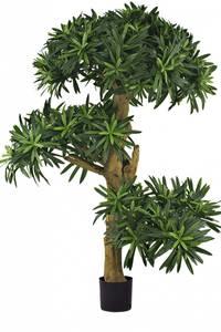 Bilde av Kunstig Podocarpus Bonsai Small 70cm