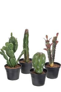 Bilde av Kunstig Kaktus Mix 4stk