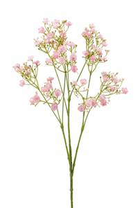 Bilde av Kunstig Gypsophila Rosa 68 cm