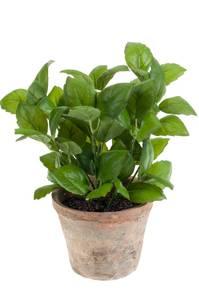 Bilde av Kunstig Basilikum Plante i Retropotte 32cm