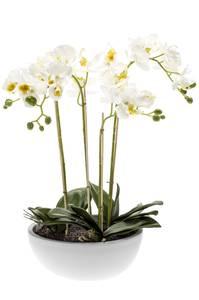 Bilde av Kunstig Orkide i Hvit Potte 60cm