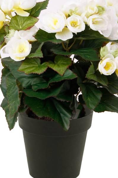 Kunstig Begonia Busk Kremhvit i Potte 29cm