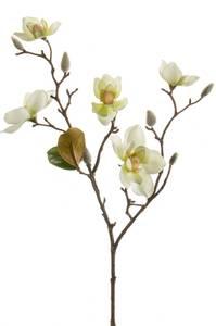 Bilde av Kunstig Magnolia Stilk Kremhvit 65cm