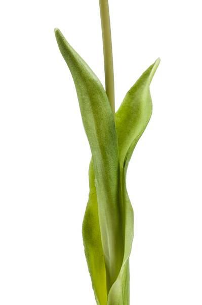 Kunstig Tulipan Gul 45cm
