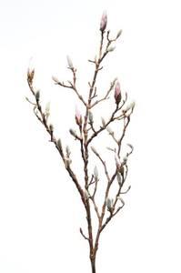 Bilde av Kunstig Magnolia Gren Rosa 100cm