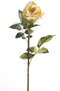 """Bilde av Kunstig Rose """"Abby"""" Champagne 65cm"""