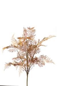 Bilde av Kunstig Skogsbregnebusk Brun 75cm