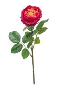 """Bilde av Kunstig Rose """"Jenny"""" Beauty 60cm"""