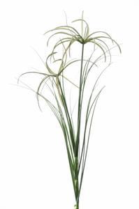 Bilde av Kunstig Cyperus Gren 65cm