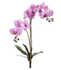 Bilde av Kunstig Orkide Stilk Rosa 65cm