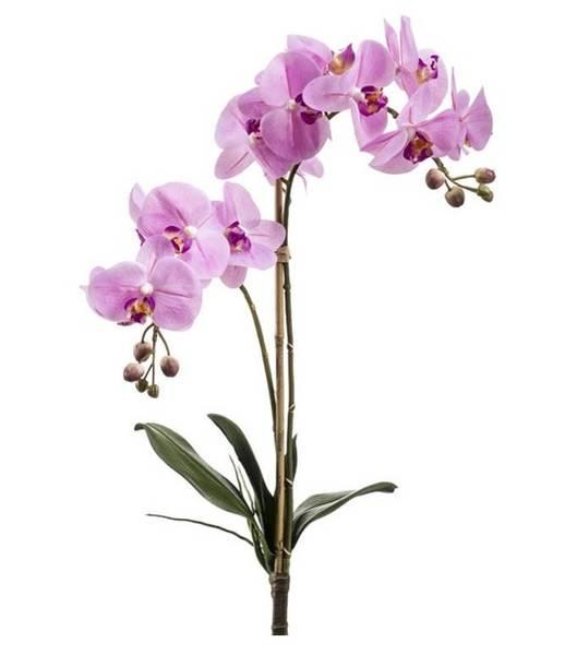 Kunstig Orkide Stilk Rosa 65cm