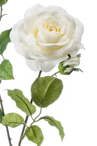 """Kunstig Rose """"Eva"""" Kremhvit 84cm"""
