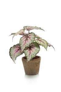 Bilde av Kunstig Begonia Busk i Retropotte 25cm