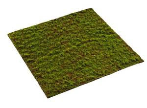 Bilde av Kunstig Grimmia Mosematte 100x100cm