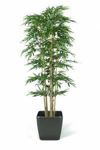 Bilde av Kunstig Bambus 300cm