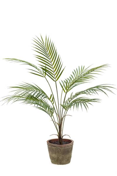 Kunstig Chamaedorea Palme i Retro Potte 85cm