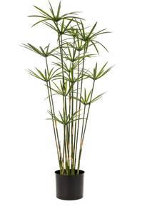 Bilde av Kunstig Cyperus 90cm