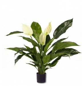 Bilde av Kunstig Fredslilje Spathiphyllum 85cm