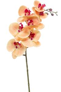 Bilde av Kunstig Orkide Stilk Fersken 83cm