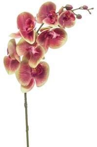 Bilde av Kunstig Orkide Stilk Fuchsia 83cm