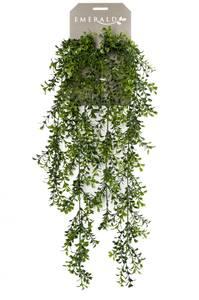 Bilde av Kunstig Hengende Buksbom 75cm