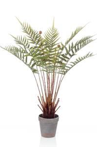 Bilde av Kunstig Bregneplante i Potte 60cm