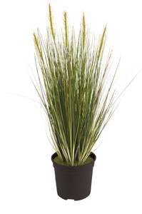 Bilde av Kunstig Gress Plante 55cm
