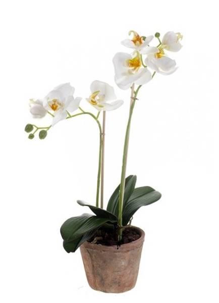 Kunstig Orkide i Retropotte Hvit 42cm