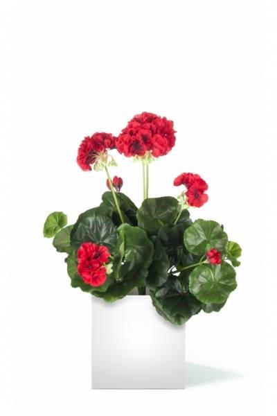 Kunstig Geranium Rød 40cm