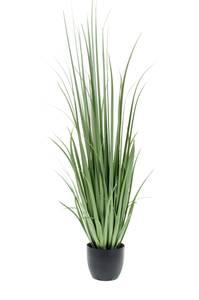Bilde av Kunstig Yucca Gress 150cm